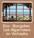 Eco - Bungalow